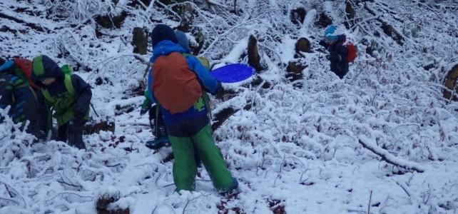 Es schneit, es schneit, kommt alle in den Wald