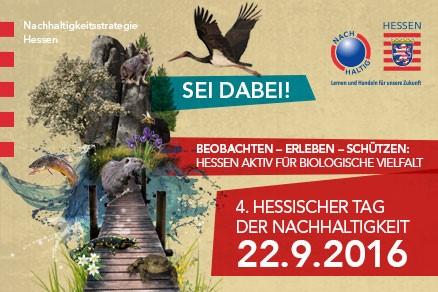 Besucht den Waldkindergarten am Hessischer Tag der Nachhaltigkeit am 22.September